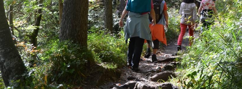 Herbstwanderungen rund um Füssen-Weissensee