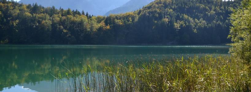 Die ca. 8,8 km lange Wandertour von Füssen-Weißensee über Roßmoos hinauf zur urigen Salober Alm
