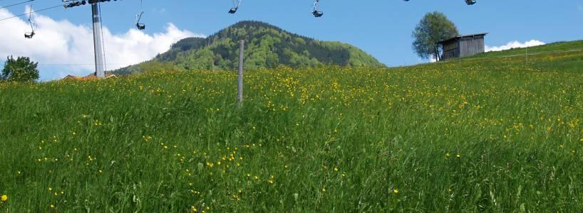 Die ca. 14,7 Kilometer lange Bergwanderung vom Tegelberg zum Schönleitenschrofen