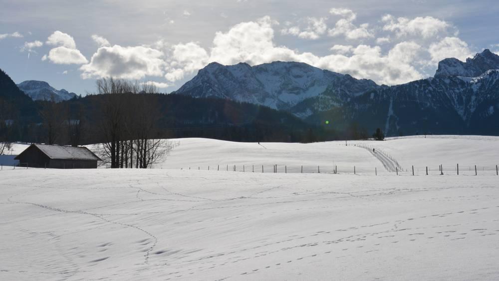 Winterimpressionen auf dem Breitenberg