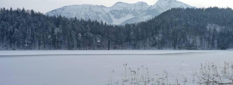 Im Winter: Die 7,5 Kilometer lange Bad Faulenbach-Alatsee-Runde