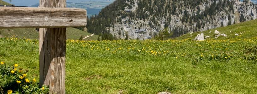 Der höchste Berg im Landkreis Ostallgäu: Die Hochplatte